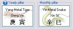Yearly Pillar Monthly Pillar