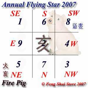 Annual Flying stars 2007