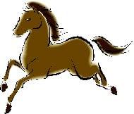 Horse-2013-almanac