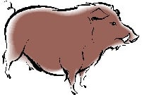 Pig 2014 Chinese Animal Predictions