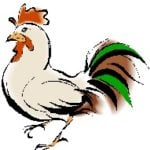 2016 Chinese Animal Prediction for the Rooster