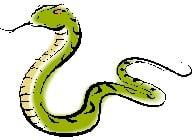 Chinese Animal Predictions 2019 Snake