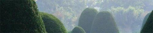 Gardens and Feng Shui