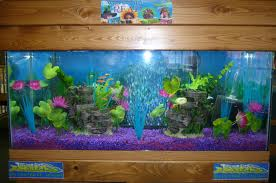 Is 2013 year of snake working out for you feng shui store for Feng shui fish tank