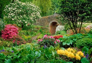 Garden Feng Shui 2014