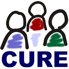 Cure Three Killings 2017