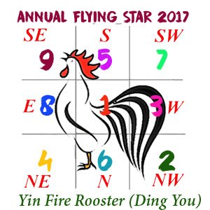 2017 Flying Star Analysis