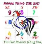 2017 Flying Star Chart #1 Star