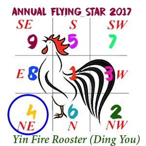 2017 Flying Star Chart #4 Star