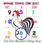 2017 Flying Star Chart #6 Star