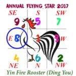 2017 Flying Star Chart #8 Star