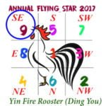 2017 Flying Star Chart #9 Star