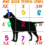 May 2018 Flying Stars