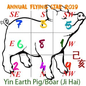 2019 Flying star chart