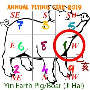 Flying Star Analysis for the 1 star in 2019