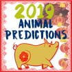 2019 Chinese Animal Feng Shui predictions