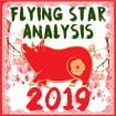 2019 Flying Star analysis