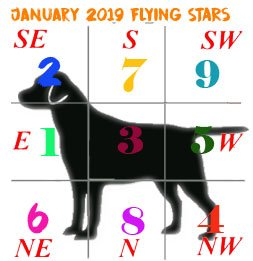 January 2019 flying stars