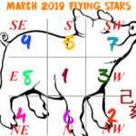 March 2019 Flying stars