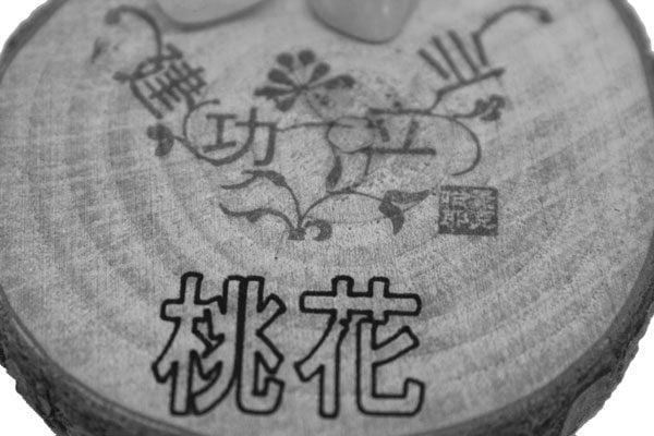 Jiangongliye Wealth and wish enhancer