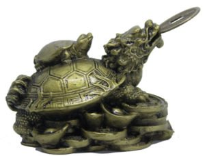 BiXi Dragon headed tortoise