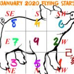 January 2020 Flying stars