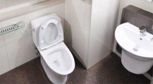 Feng Shui Toilet