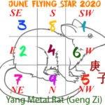 June 2020 Flying star analysis