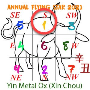 2021 Annual Feng Shui number 1 star