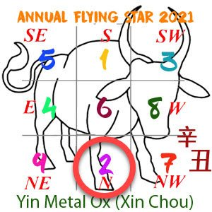 2021 Annual Feng Shui number 2 star