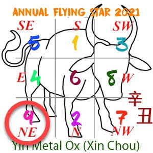 2021 Annual Feng Shui number 9 star