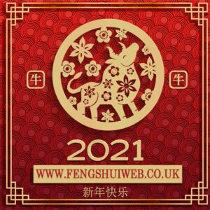2021 Chinese New Year Feng Shui Store