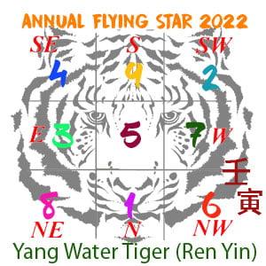 2022 Feng Shui Flying star chart
